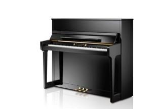 WILHELM SCHIMMEL Klavier W 118 T